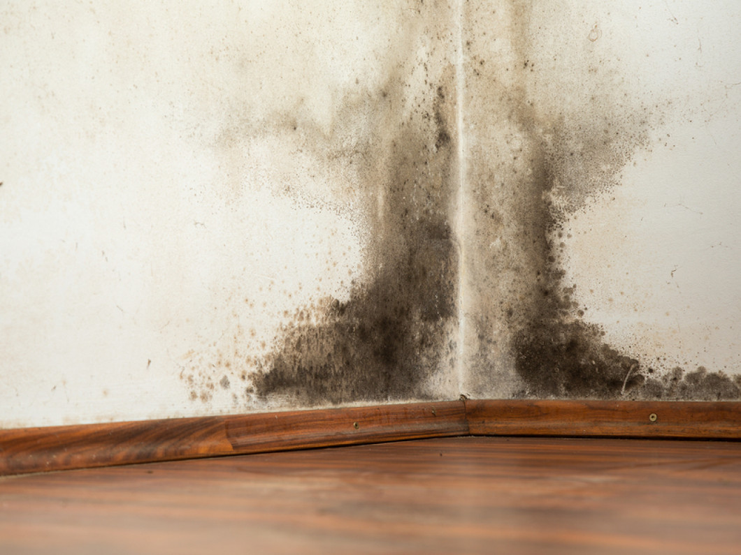Concerned about Indoor Air Quality?